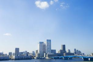 晴海トリトンスクエア方面の都市ビル群の写真素材 [FYI03198933]
