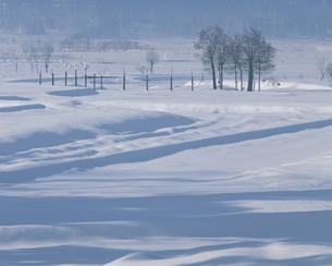雪の信濃川河畔  新潟県の写真素材 [FYI03199079]