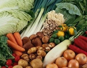野菜の集合(白菜・人参・葱・大根・里芋など)の写真素材 [FYI03199151]
