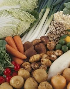 野菜の集合の写真素材 [FYI03199156]