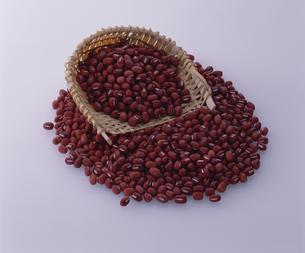 ザルからこぼれる小豆の写真素材 [FYI03199235]