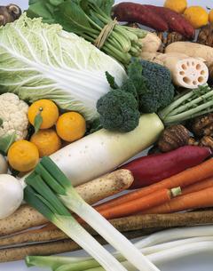 冬野菜の集合の写真素材 [FYI03199289]