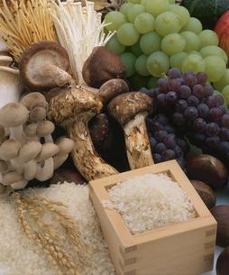 米と松茸とブネシメジとシイタケとブドウの写真素材 [FYI03199359]