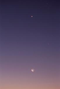 日の出前の月と星の写真素材 [FYI03199686]