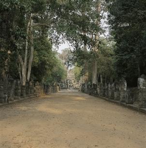 プリアカーンの西門の並木道 カンボジアの写真素材 [FYI03199734]