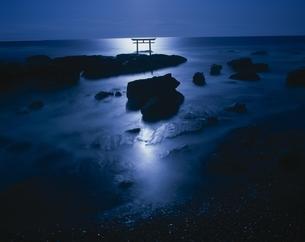 月光に映える神社の鳥居    大洗町 茨城県の写真素材 [FYI03199943]