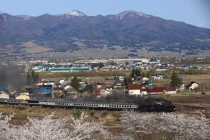 桜咲く会津盆地とSL磐越物語号の写真素材 [FYI03200066]