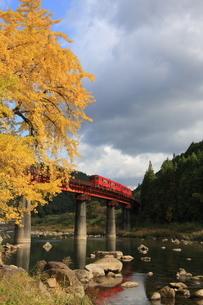 イチョウと玖珠川と久大本線の写真素材 [FYI03200133]