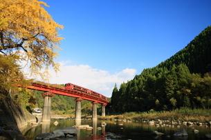 イチョウと玖珠川と久大本線の写真素材 [FYI03200156]