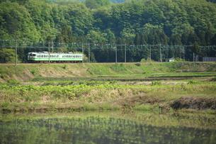 新緑の山間をゆく上越線と棚田の写真素材 [FYI03200168]