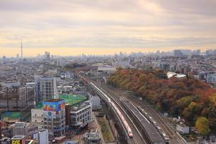 スカイツリーと飛鳥山公園と東北新幹線の写真素材 [FYI03200169]