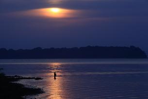 浜名湖の釣り人の写真素材 [FYI03200172]