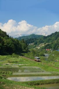 北アルプスと姫川流域の田園とディーゼルカーの写真素材 [FYI03200196]