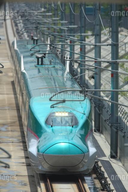 E5系東北新幹線はやぶさの写真素材 [FYI03200226]