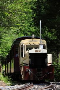 ヒノキ林と赤沢森林鉄道の写真素材 [FYI03200290]