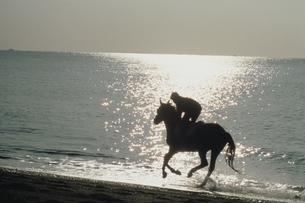 海辺にて乗馬する人物のシルエットの写真素材 [FYI03201104]