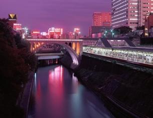 聖橋とお茶の水駅の夜景   東京都の写真素材 [FYI03201476]