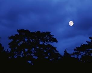 気比の松原に昇る月 敦賀市 福井県の写真素材 [FYI03201524]