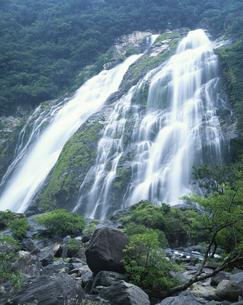 大川の滝  屋久島 鹿児島県の写真素材 [FYI03201532]