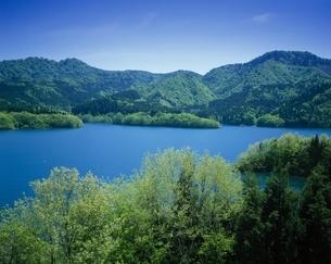 新緑の宝仙湖    秋田県の写真素材 [FYI03201608]