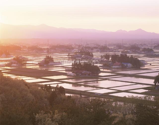 水田と散居村の夕景の写真素材 [FYI03201665]