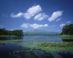 駒ヶ岳と大沼公園 北海道の写真素材 [FYI03202047]