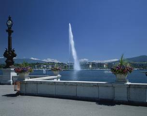 レマン湖の大噴水 ジュネーブ スイスの写真素材 [FYI03202065]