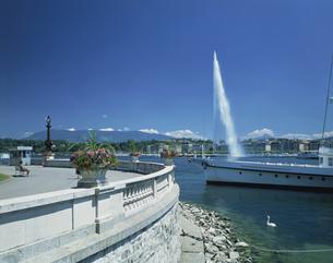 レマン湖の大噴水 ジュネーブ スイスの写真素材 [FYI03202066]