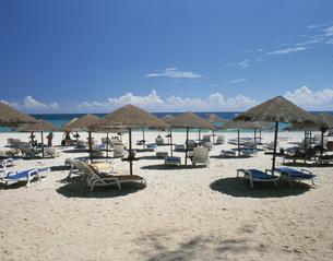 海辺のパラソル(ルメリディアンホテル) プーケット タイの写真素材 [FYI03202133]