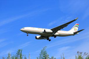ジェット機 ETIHAD航空の写真素材 [FYI03202659]