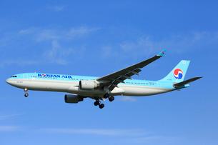 ジェット機 ANAの写真素材 [FYI03202671]
