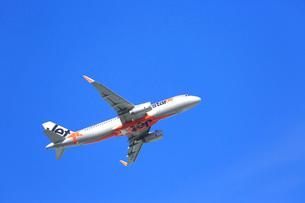 ジェット機 Jetstarの写真素材 [FYI03202683]