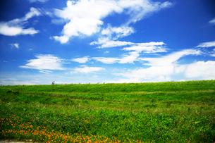 緑の土手を行くサイクリング車の写真素材 [FYI03202719]