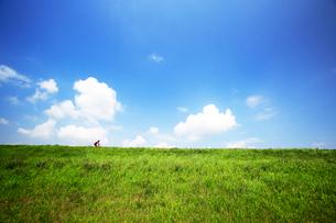 緑の土手を行くサイクリング車の写真素材 [FYI03202729]