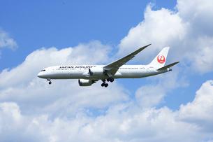 ジェット機,日本航空の写真素材 [FYI03202938]