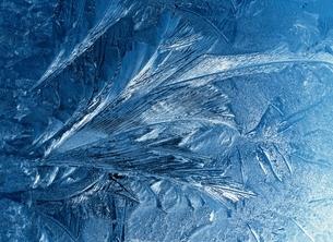 ガラスについた霜の結晶  長野  木島平村の写真素材 [FYI03203384]