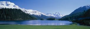 シルヴァプラナ湖      サンモリッツ スイスの写真素材 [FYI03203501]