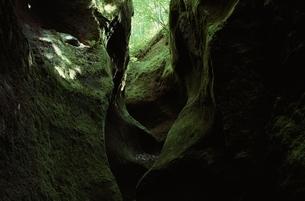苔の洞門      支笏湖周辺 北海道 7月の写真素材 [FYI03203676]