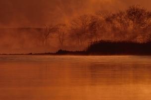 朝日に染まる湖   標茶町 北海道 10月の写真素材 [FYI03203724]