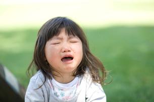 大泣きする女の子の写真素材 [FYI03204231]