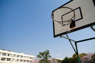 バスケットゴールの写真素材 [FYI03204314]