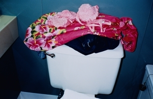 トイレタンクの上のドレスの写真素材 [FYI03204560]