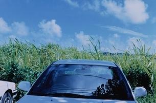 沖縄 糸満市の写真素材 [FYI03204571]