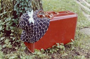 庭に置かれた旅行鞄と帽子と蝶々の写真素材 [FYI03204614]
