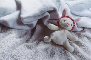 毛布の上のウサギのぬいぐるみの写真素材 [FYI03204684]