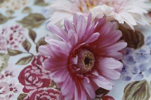 花柄のテーブルクロスとピンク色の造花の写真素材 [FYI03204697]