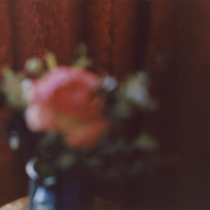 アウトフォーカスの花瓶の花の写真素材 [FYI03204735]