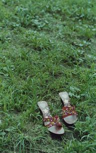 草むらに置かれた赤のサンダルの写真素材 [FYI03204797]