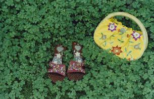 草むらに置かれたサンダルと鞄の写真素材 [FYI03204806]