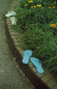 花壇のはじのビーチサンダルの写真素材 [FYI03204807]